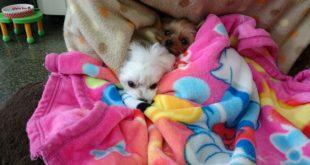 寒すぎて(:_;)