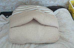 オーガニックコットンのベッド