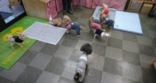 幼稚園状態!!